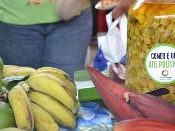 Consea-MG promove debate sobre desmonte das políticas públicas de segurança alimentar e nutricional