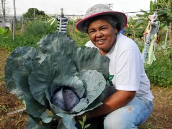 Uma horta comunitária, orgânica, que mudou a cultura de uma comunidade e salvou vidas
