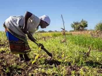 Campanha SOS África chega ao fim, mas a reconstrução continua nos países atingidos pelo Ciclone Idai