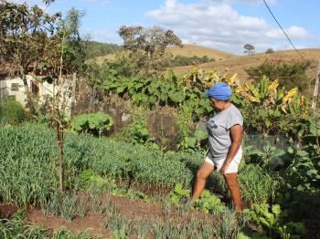 Agricultura familiar e mineração: as histórias de camponeses em Conceição do Mato Dentro
