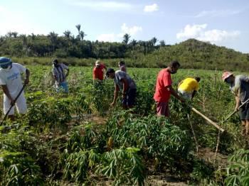 Agroecologia em tempos de pandemia, um caminho para a agricultura familiar