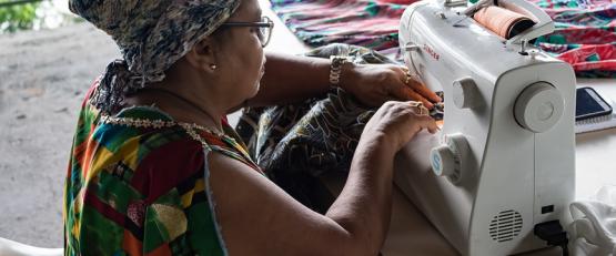 Fortalecimento da Economia Popular Solidária no Brasil